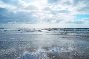 Nordsee - Blick auf das Meer